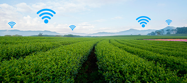 Iot en Agricultura